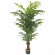 Fern potted 180cm height, green